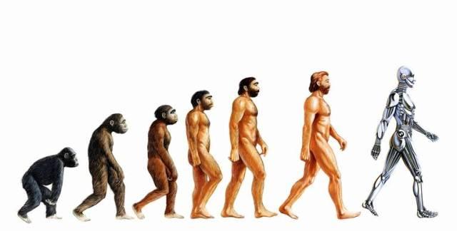 Concepto-evolucion